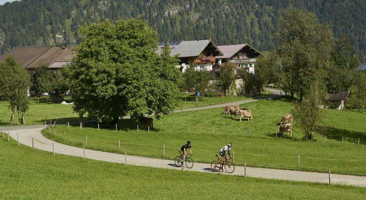 Kaiserwinkl Mountainbike ©Tirol Werbung / Marshall George