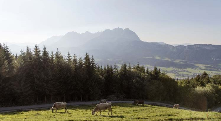 St Johann im Walde ©Tirol Werbung / Bauer Frank