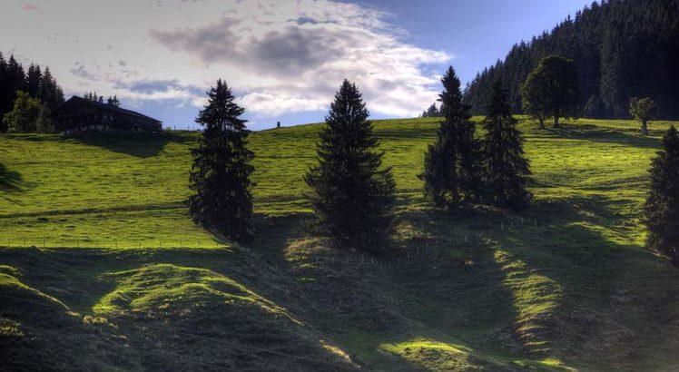 Wilder Kaiser Mountainbike ©Tirol Werbung / Uhlig Bernd