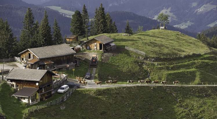 Wildschönau ©Tirol Werbung / Krings Maren