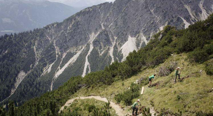 Mieminger Plateau Wandelen ©Tirol Werbung / Jarisch Manfred
