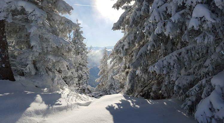 Kaiserwinkl Wintersporten